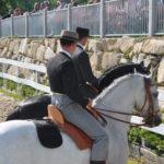 pferdefest_0479