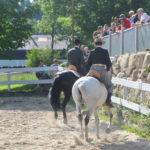 pferdefest_0480
