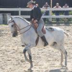 pferdefest_0488