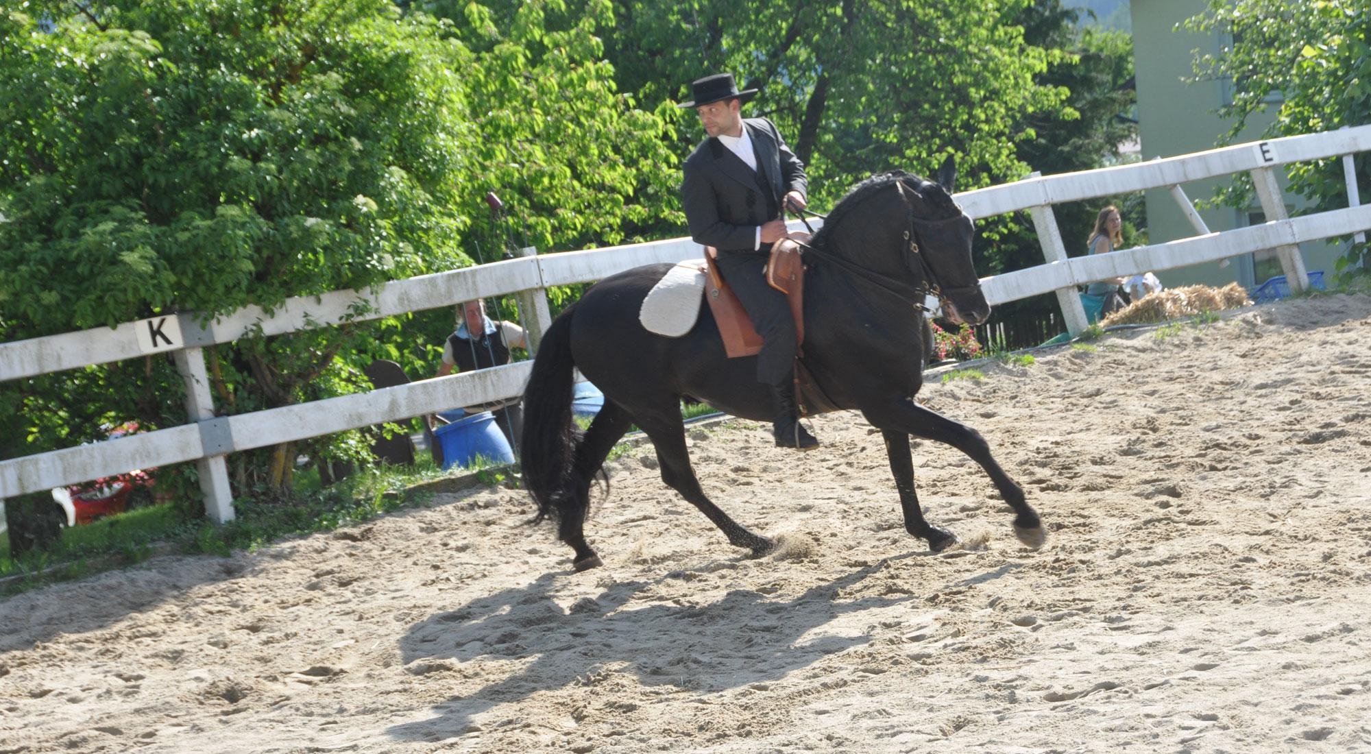 pferdefest_0515